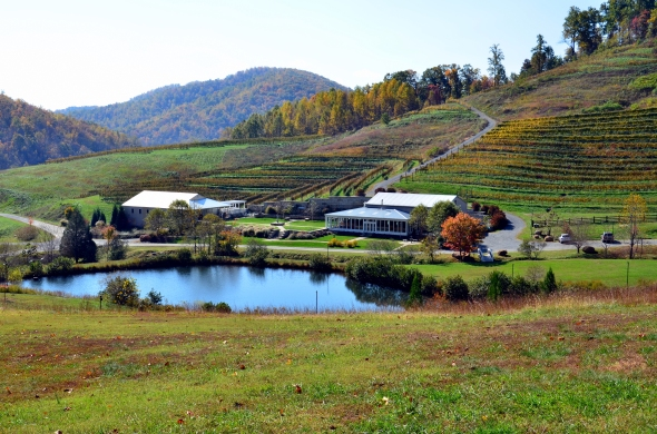 Delfosse Vineyards